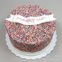 Rainbow Sprinkles Engagement