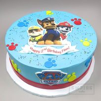 Paw Patrol (with flat edible print decoration)